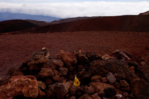 Mauna Kea peak